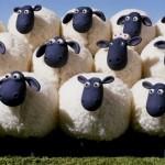 Ο γρίφος με τα πρόβατα